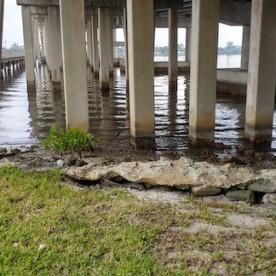 under the Palm City Bridge