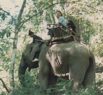 Elephant_riding_Thailand